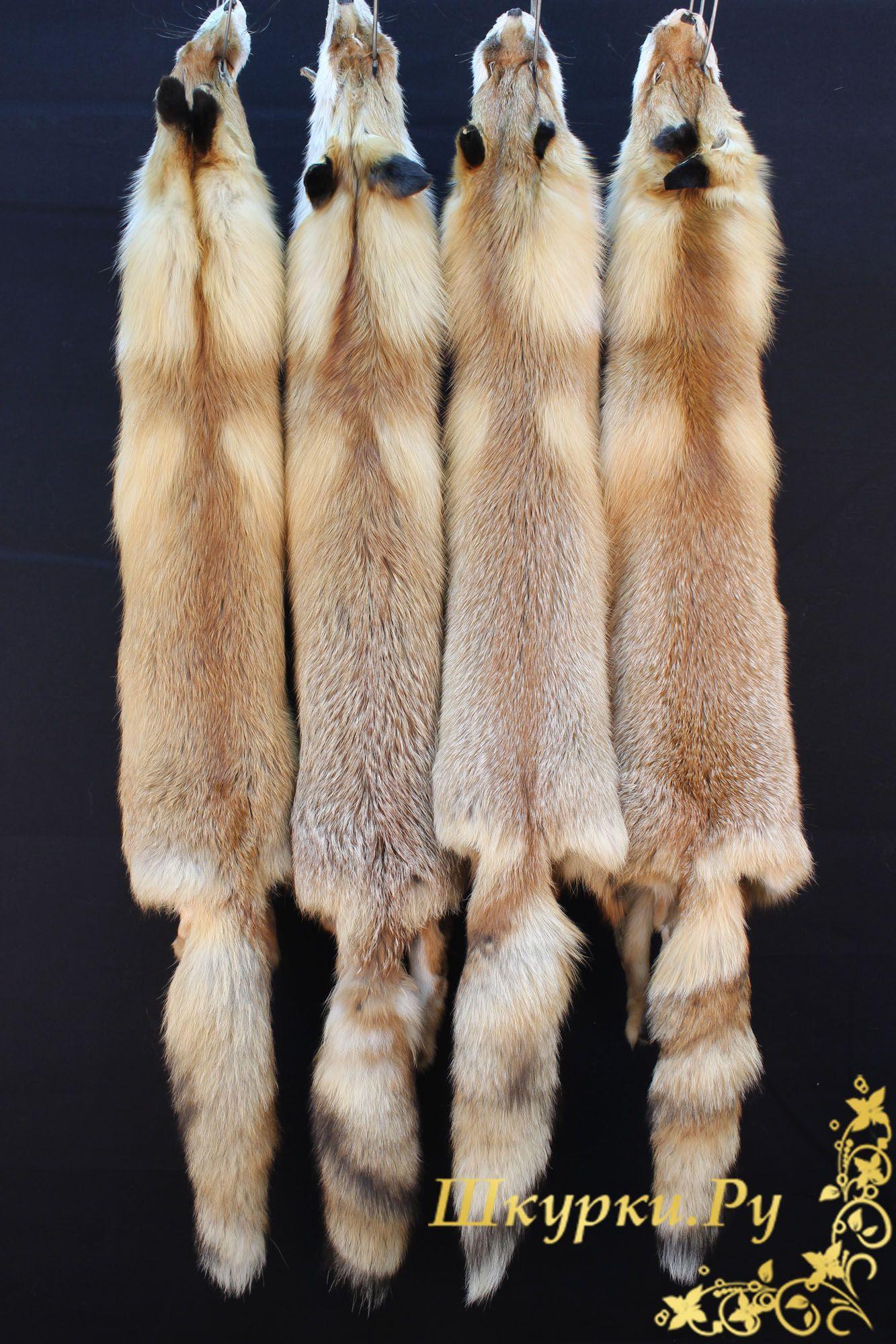 Барнаул объявления куплю шкурки меховые не выыделанные дать объявление в болгарии